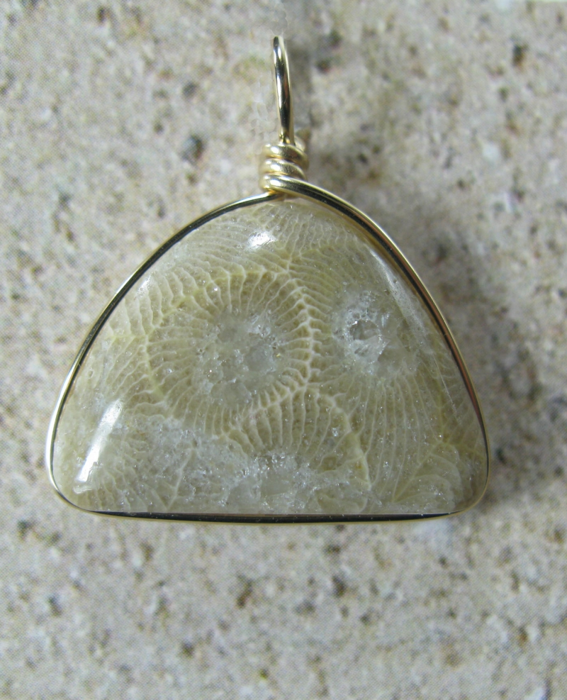 Petoskey Pendant in Gold