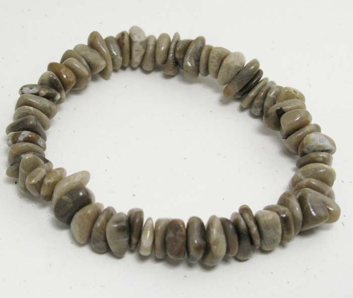 Stretchy Bracelet in Petoskey Stones