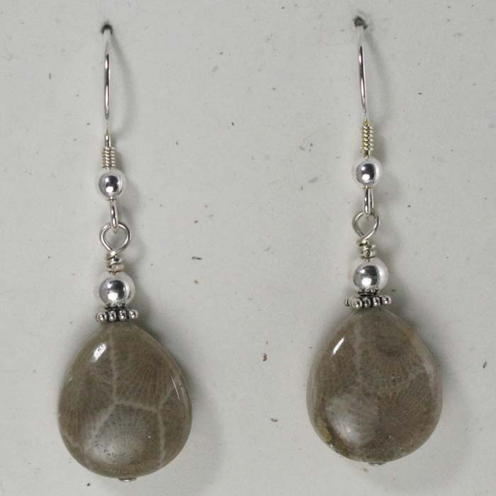 Teardrop Petoskey Stone Earrings