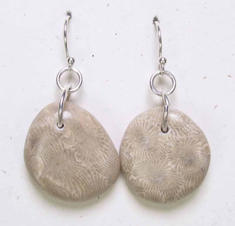 Very Large Natural Petoskey Stone Earrings