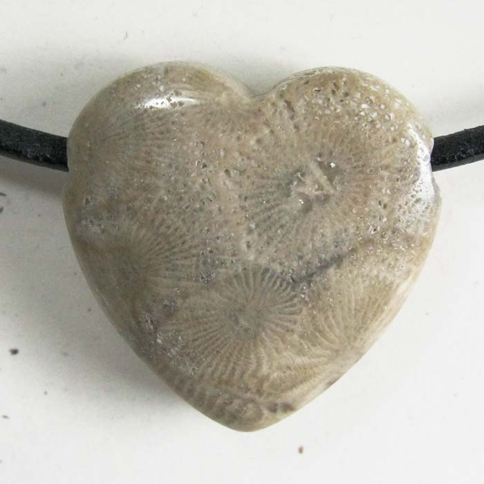 Petoskey Stone Heart Pendant - Side-drilled